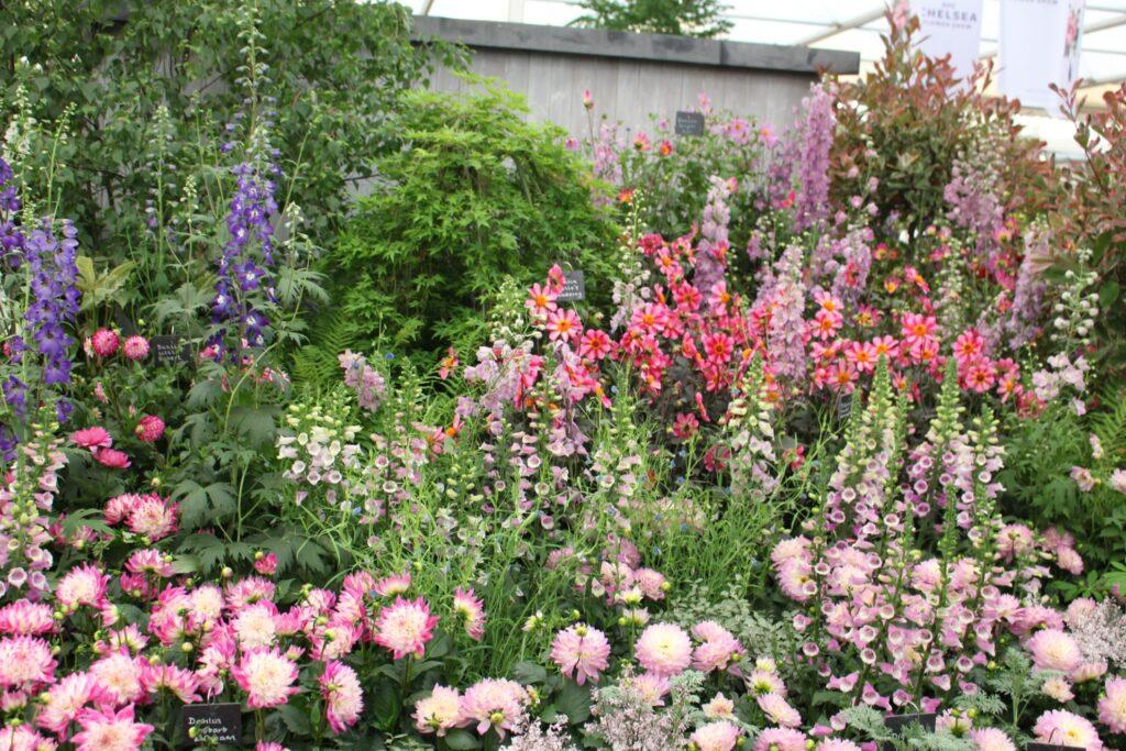 2019 Great Pavilion floral display.