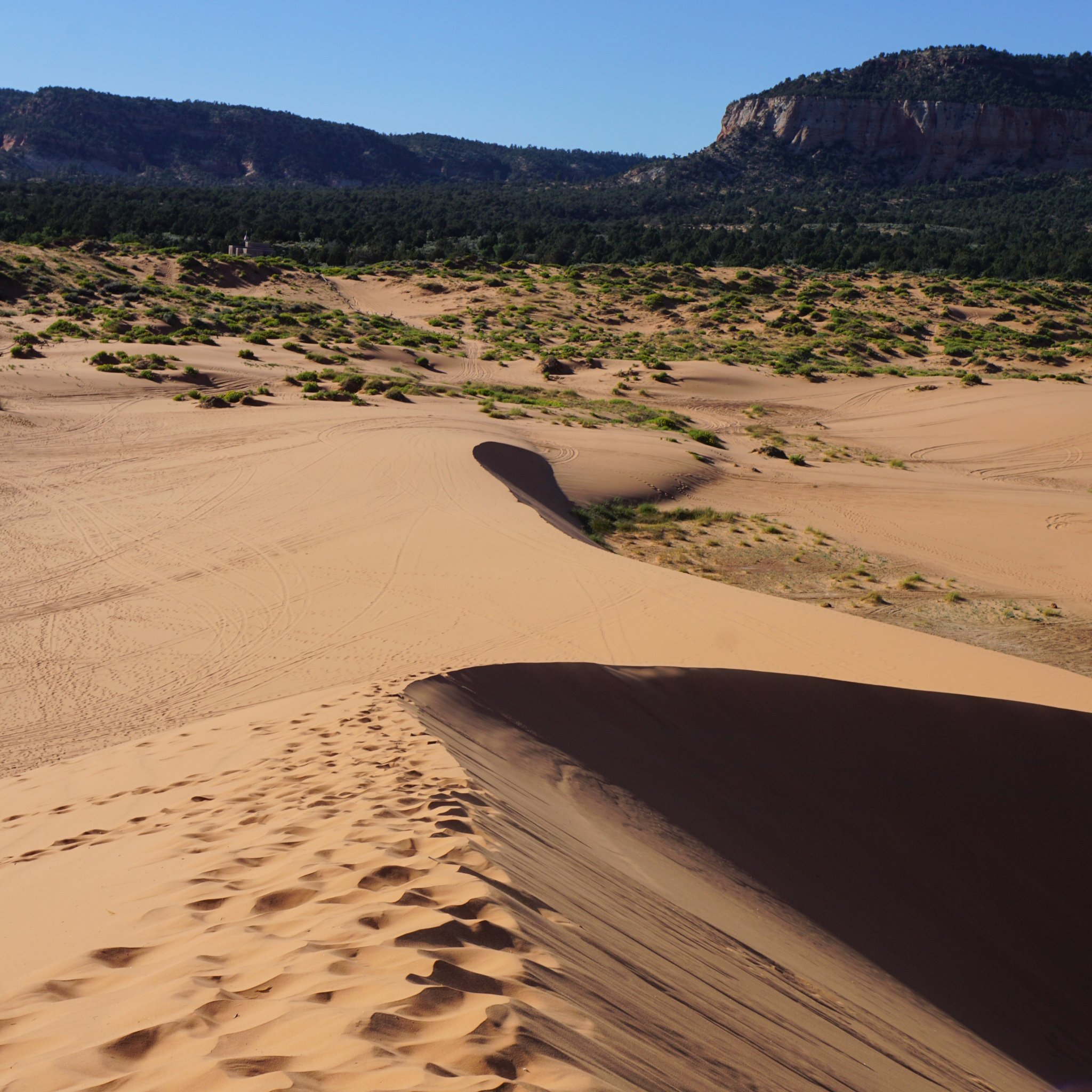 20 Must Visit Sand Dunes In The Southwest