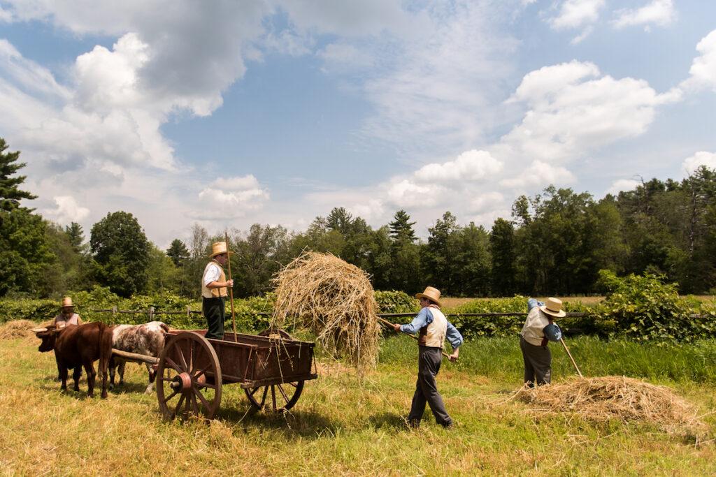 Farm Work at Sturbridge Village.