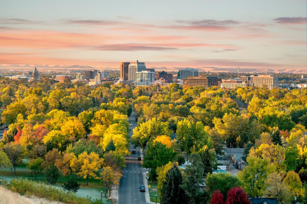 Trees in Boise, Idaho, during Autumn.
