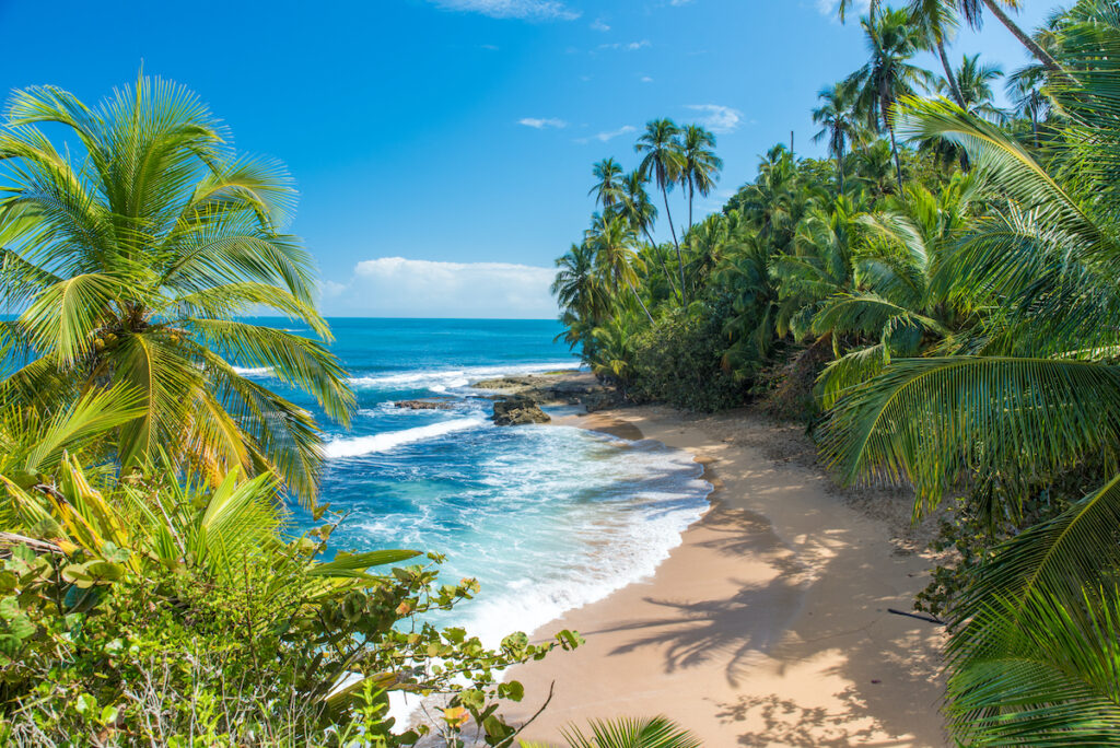 A beach at Puerto Viejo in Costa Rica.
