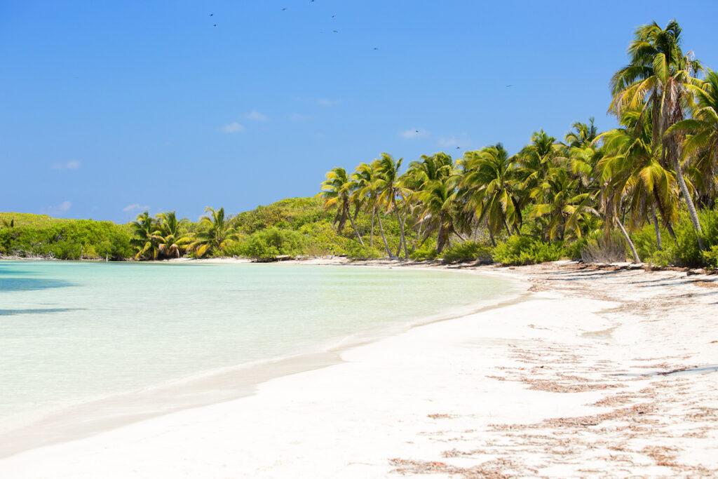A beach on Isla Contoy near Isla Mujeres.