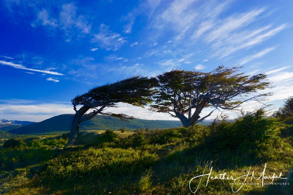 A beautiful landscape in South America.
