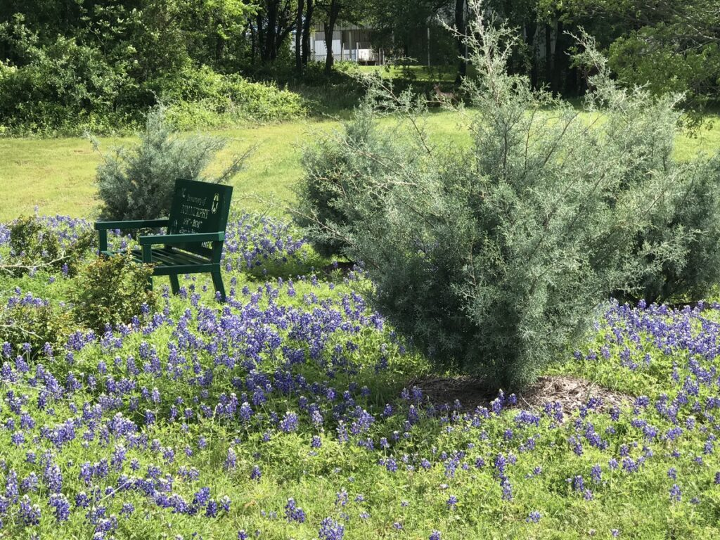 A bench and flowers near an RV park.