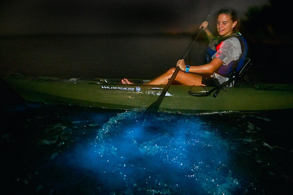 A bioluminescent kayak tour via A Day Away Kayak Tours.