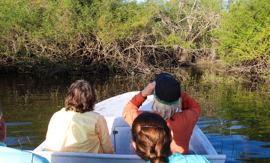 A bird-watching boat tour at Crooked Tree.