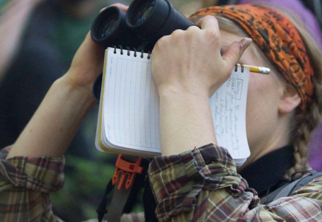 A birdwatcher in Hawaii.