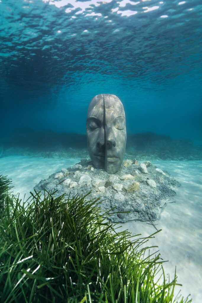 A bisected face under the water.