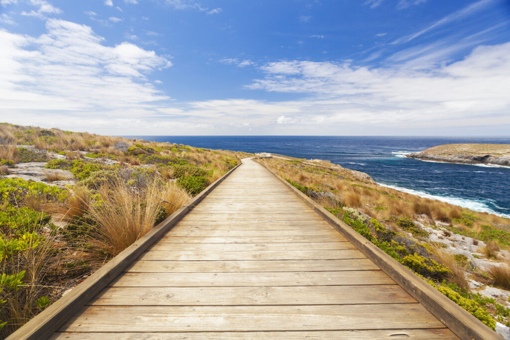 A boardwalk to the beach on Kangaroo Island.
