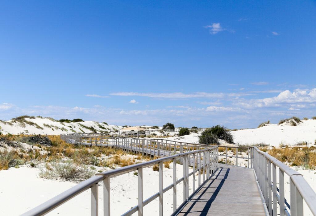A boardwalk trail through White Sands National Park.