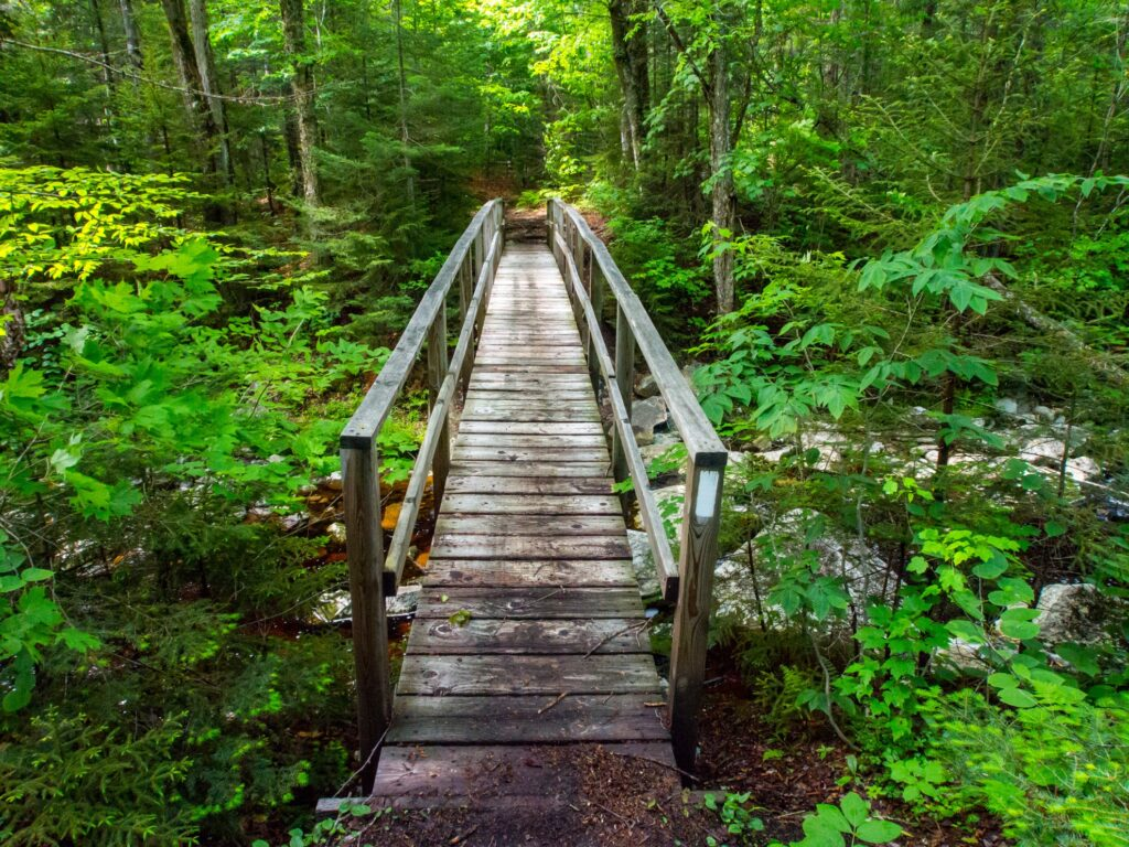 A bridge along the Appalachian Trail in Vermont.