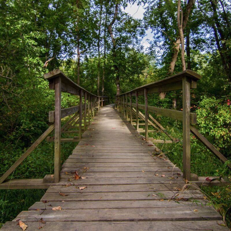 A bridge along the Appalachian Trail in New Jersey.