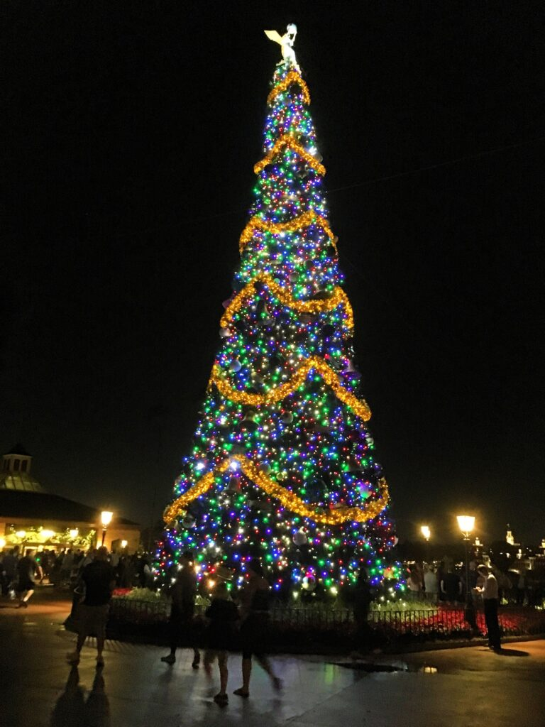 A Christmas tree during the Festival of the Holidays.