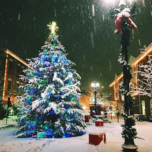 A Christmas tree in downtown Indiana, Pennsylvania.