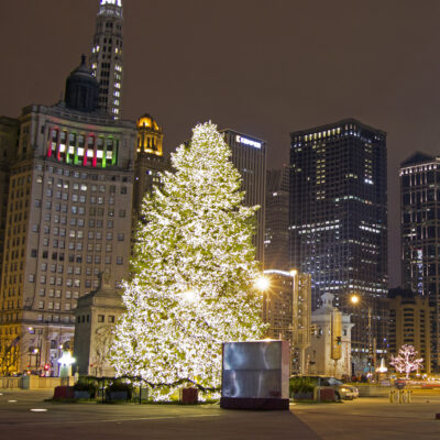 A Christmas tree in downtown Chicago, Illinois.