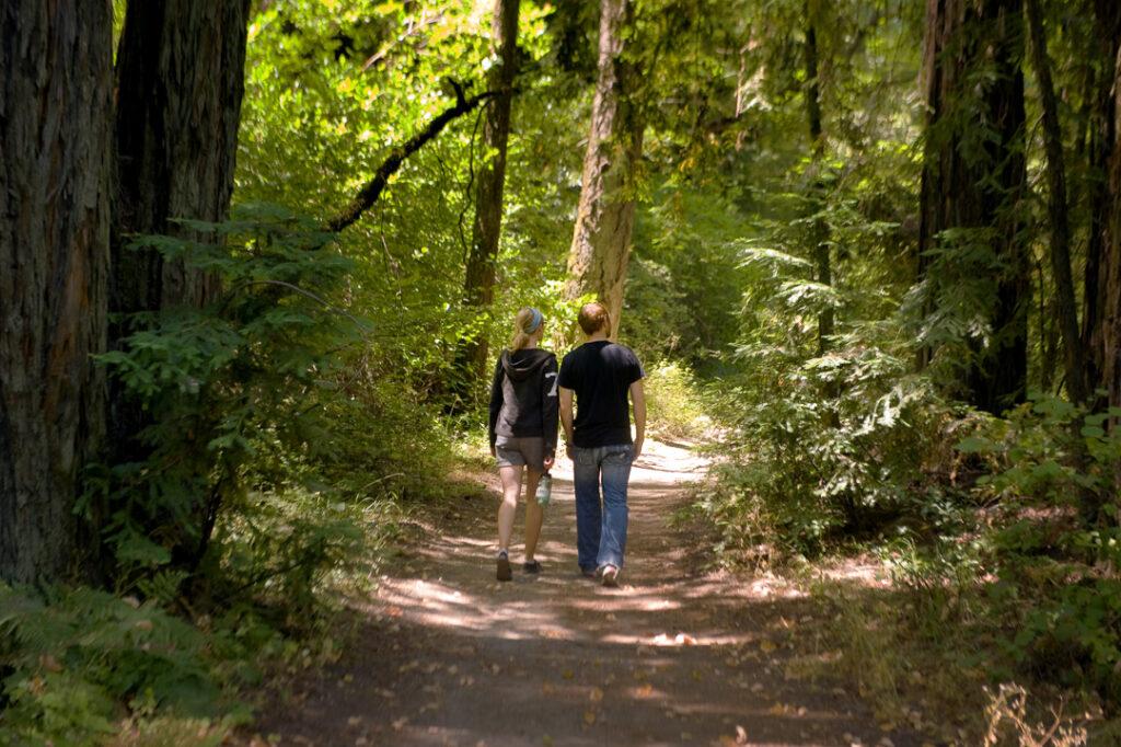 A couple walking through Bothe-Napa Valley State Park.