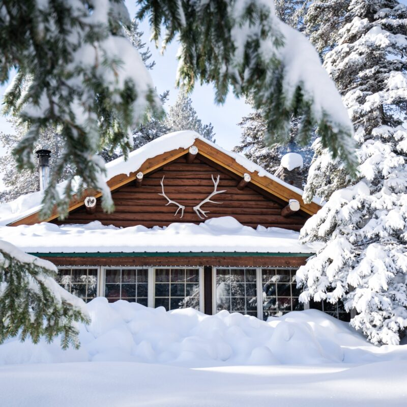 A cozy cabin in the woods, surrounded by snow.