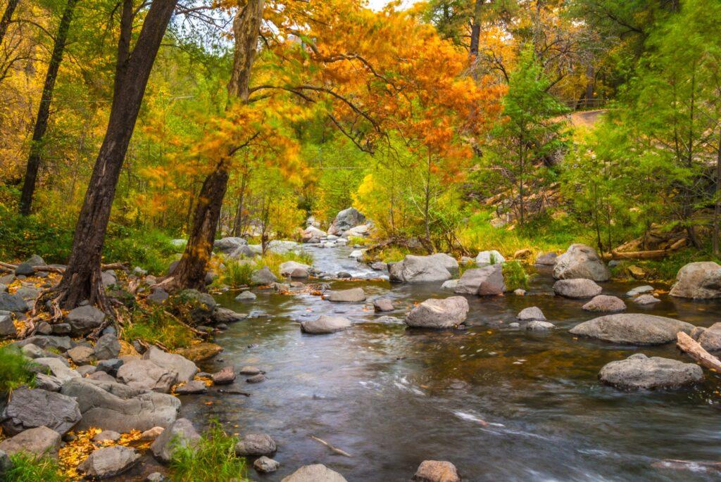 A creek in Arizona during the fall.