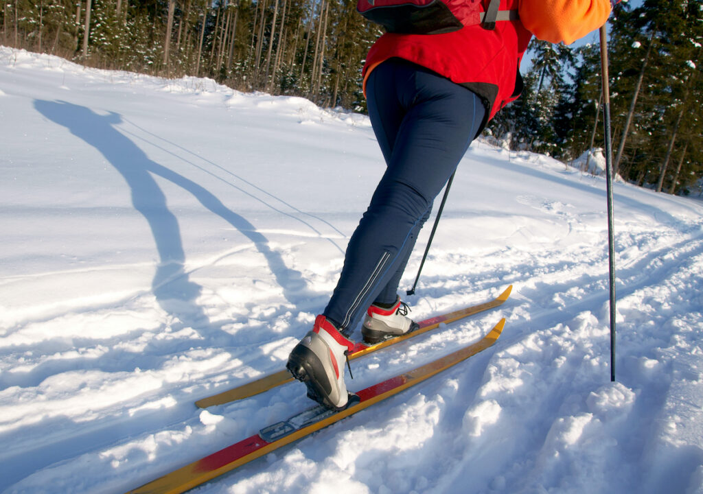 A cross-country skier on a double track.