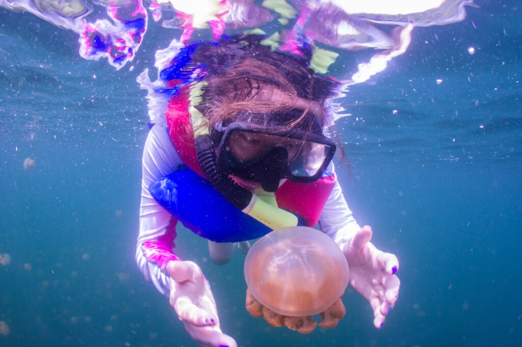A diver in Jellyfish Lake.