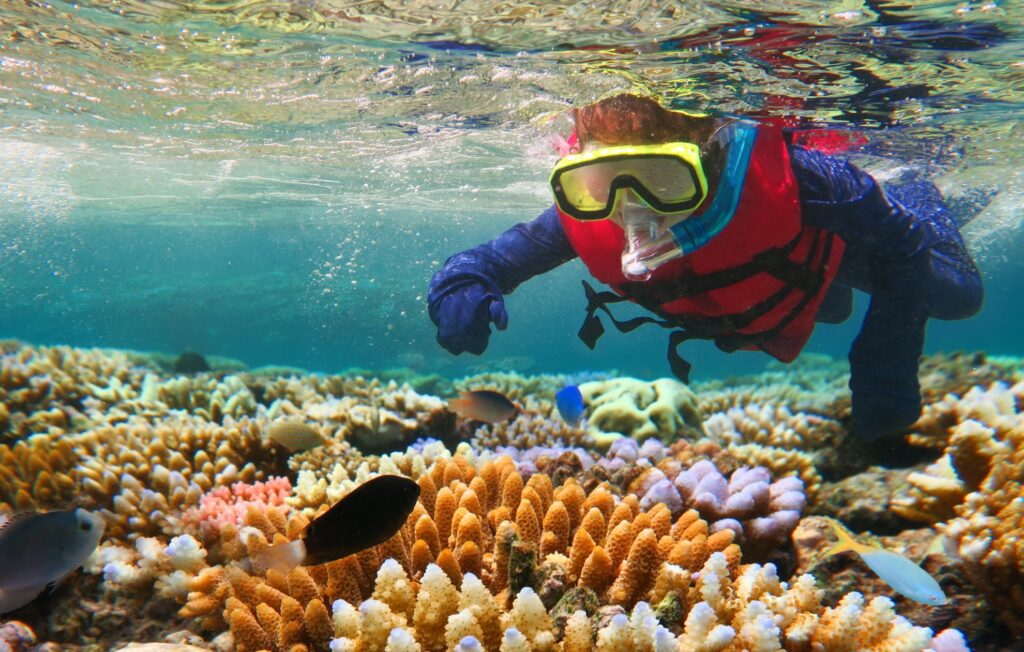 A diver in the Great Barrier Reef.
