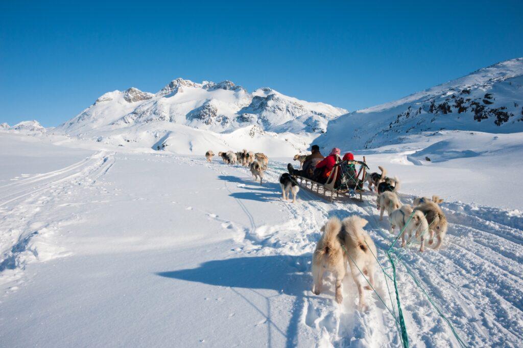 A dog sledding tour in Greenland.