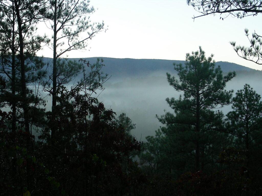 A foggy morning along the Pinhoti Trail in Alabama.