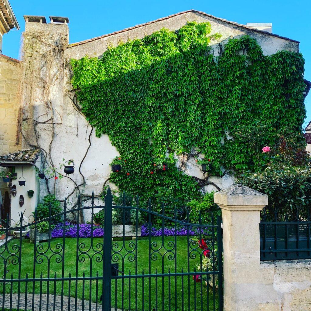 A garden in Saint Emilion.