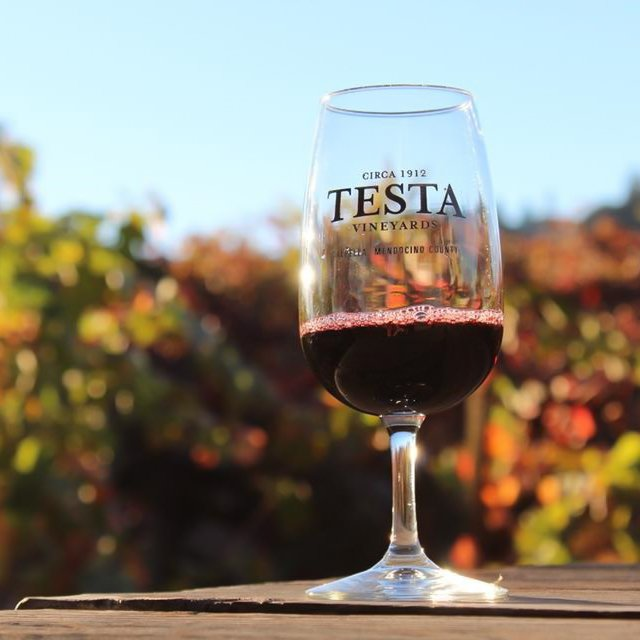 A glass of wine at the Testa Ranch and vineyards.