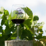 A glass of wine from the Shawnee Hills Wine Trail.