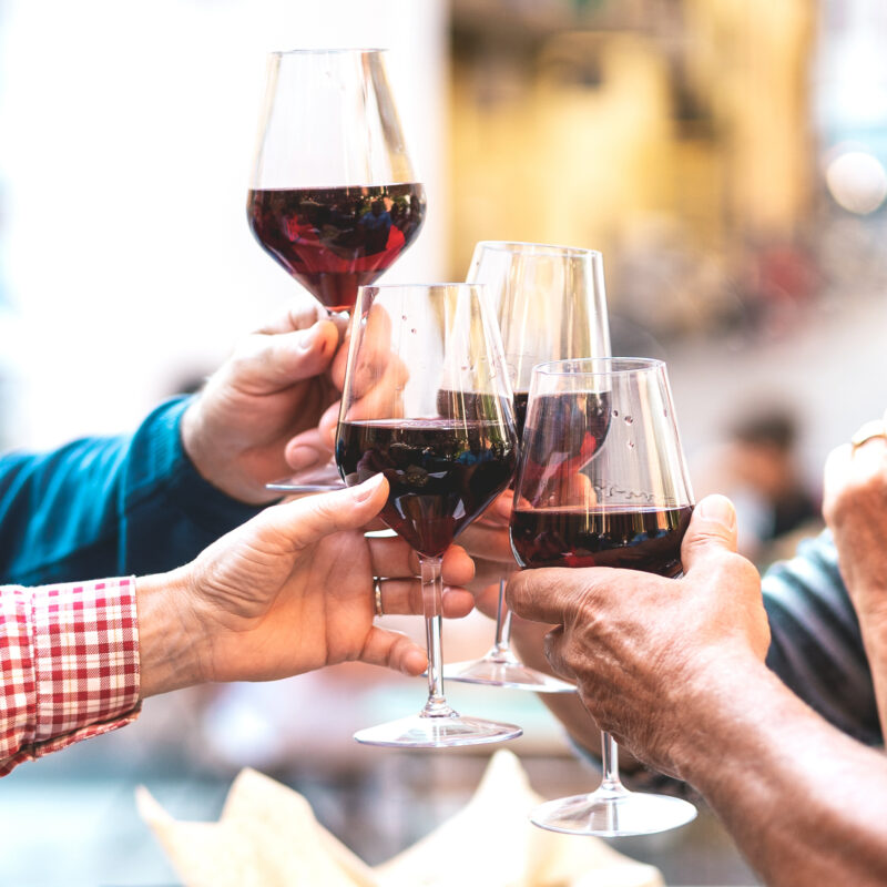 A group of friends toasting at dinner.