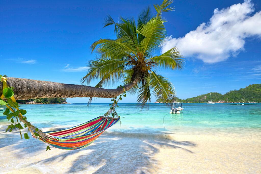 A hammock in the Seychelles.