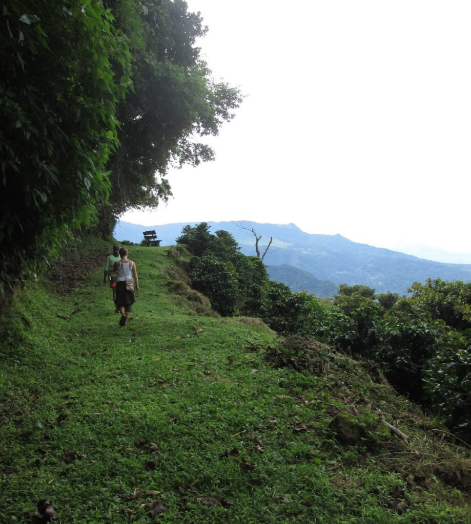 A hike in Boquete.