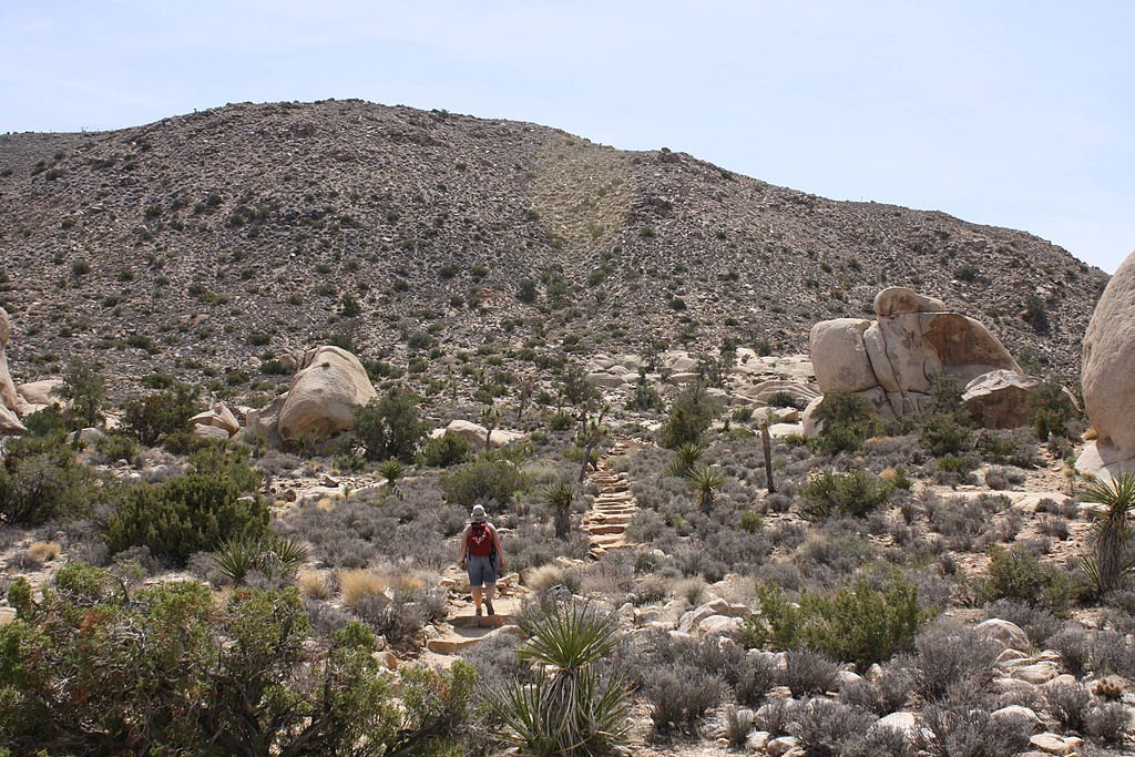 A hiker climbing Ryan Mountain.