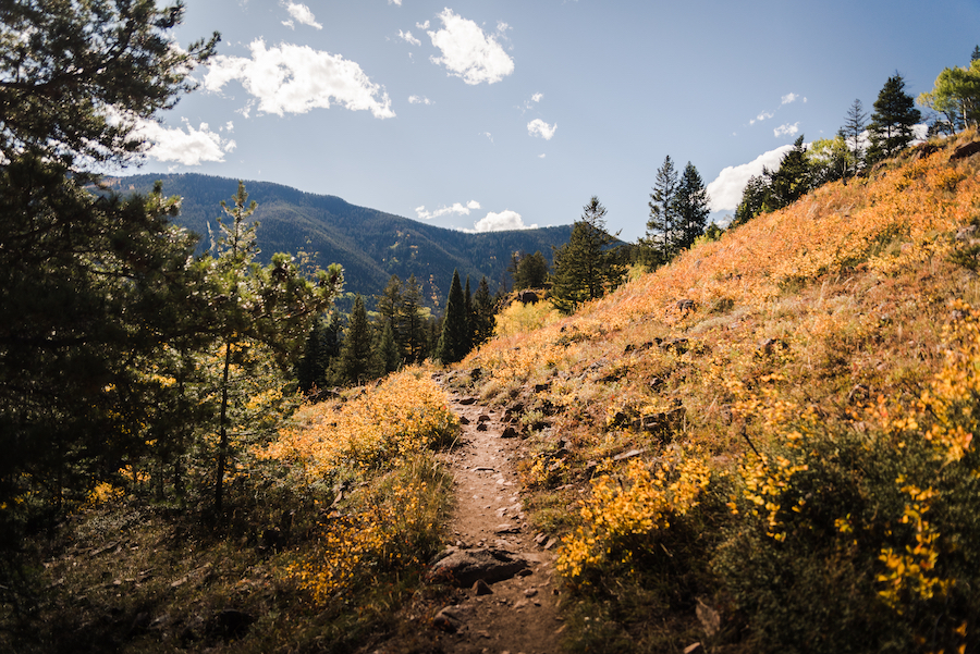 A hiking trail in Vail, Colorado, during the fall.