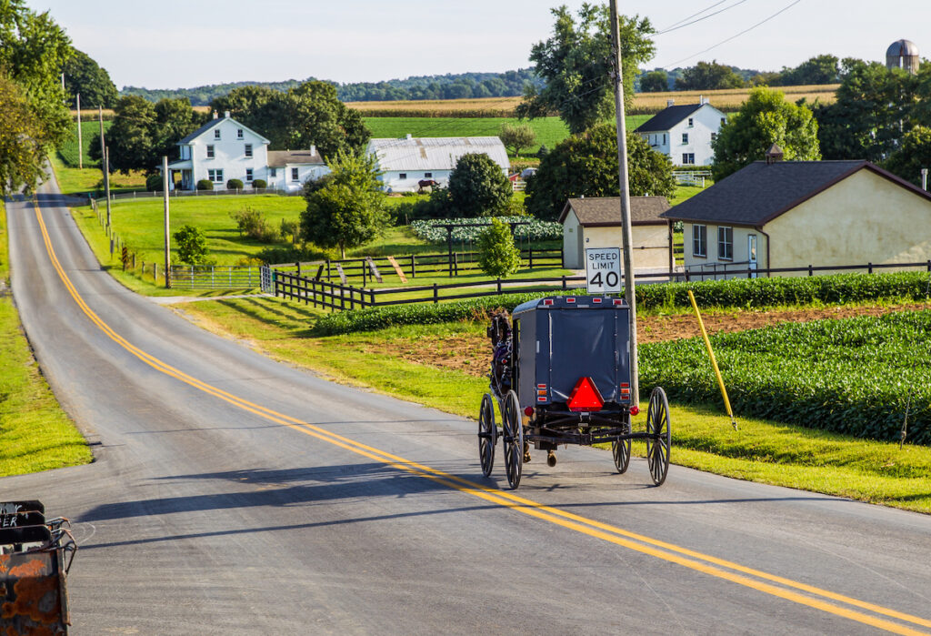 A horse and buggy in Lancaster.