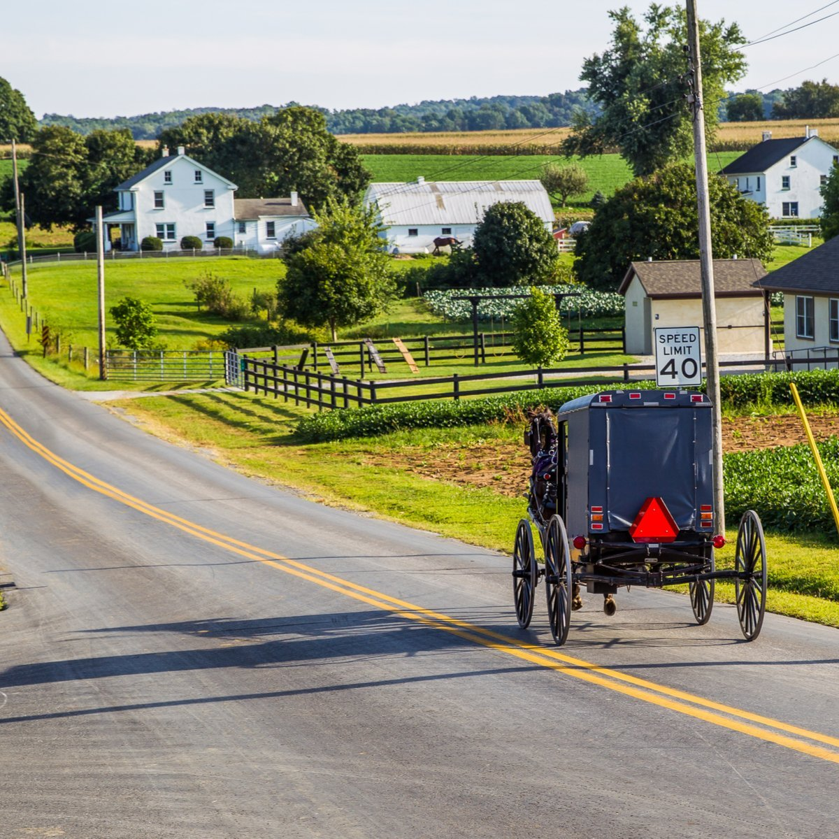A horse and buggy ride through Lancaster, Pennsylvania.
