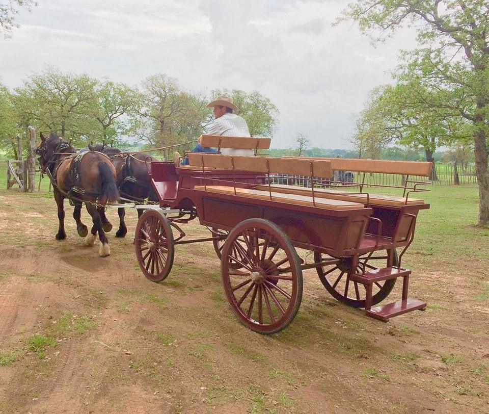 A horse and carriage tour via Eagle Eye Ranch.