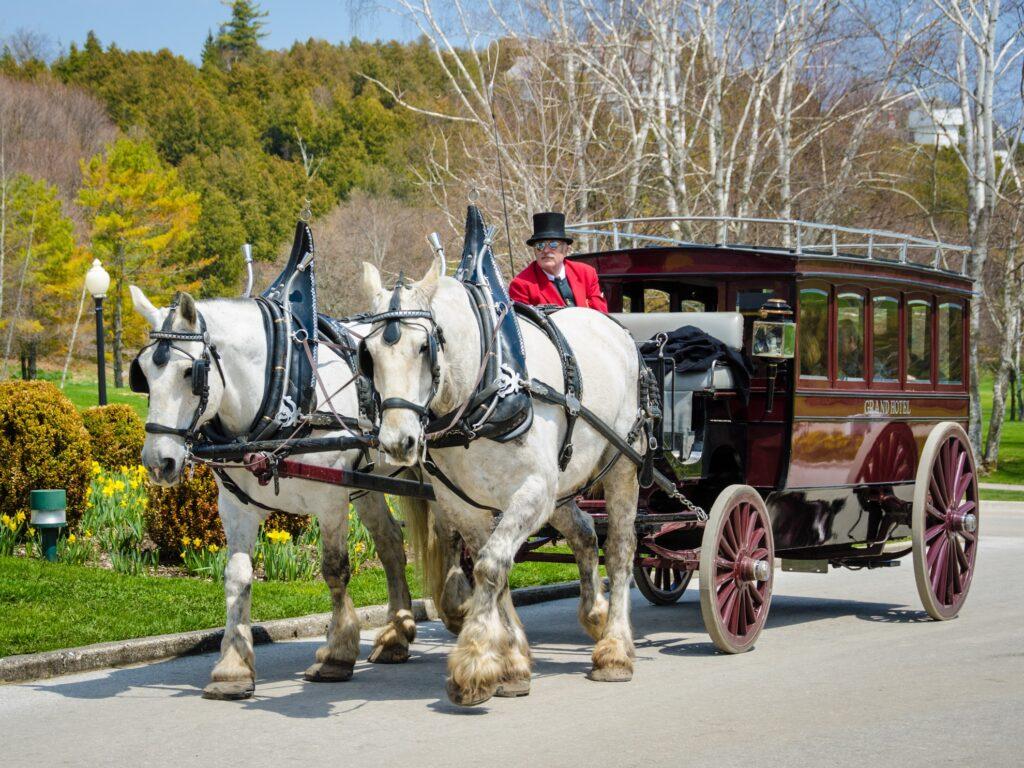 A horse-drawn carriage on Mackinac Island.