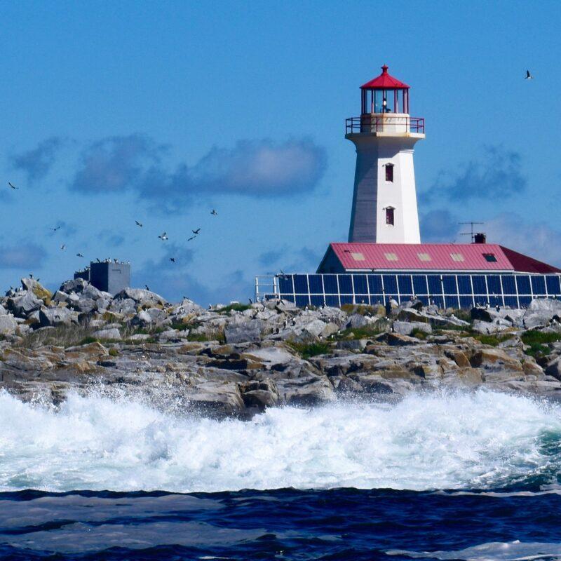 A lighthouse on Machias Seal Island.