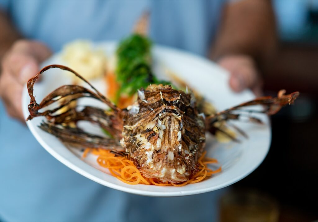 A lionfish from Castaway Waterfront Restaurant.