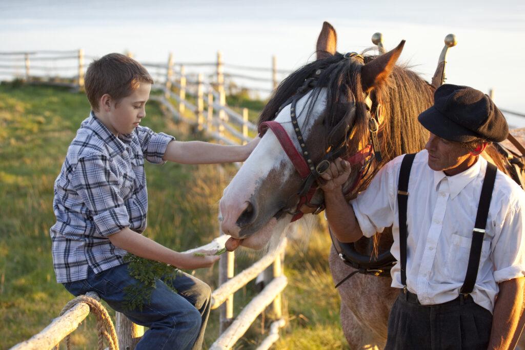A man and boy examine a horse