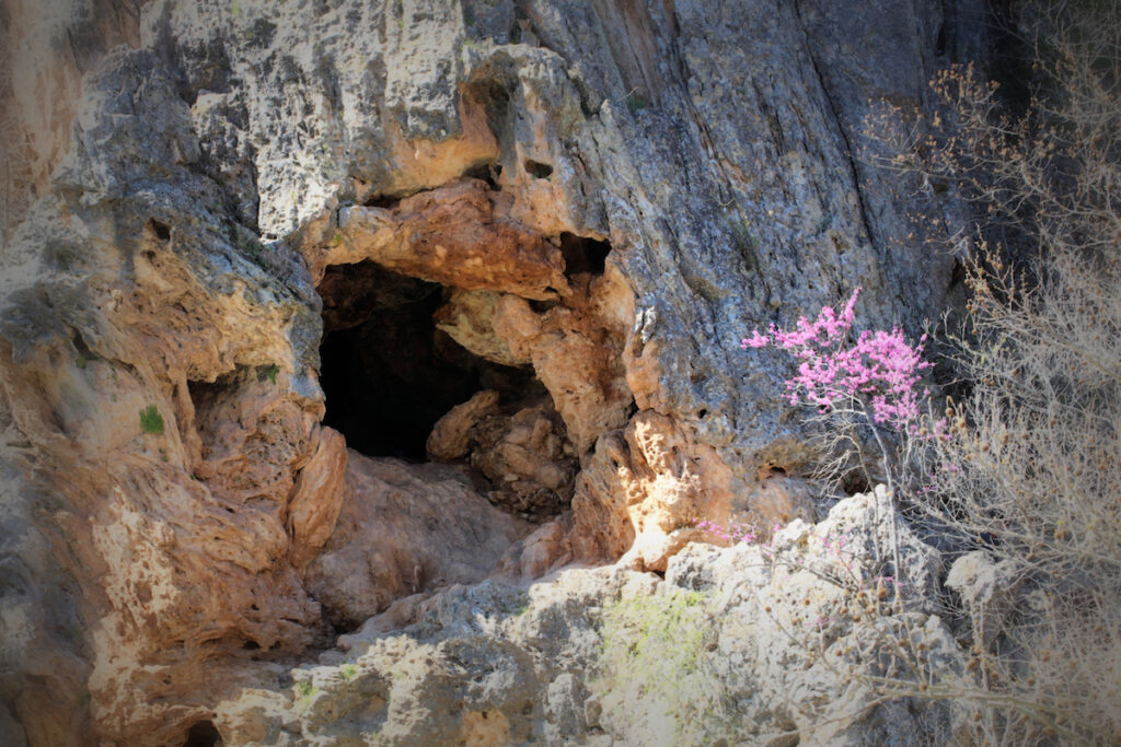 A natural cave in Turner Falls Park, Oklahoma.