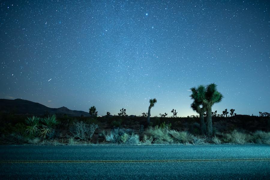 A night sky full of stars over Joshua Tree National Park.