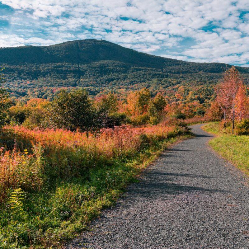 A path leading towards Mount Greylock in Massachusetts.