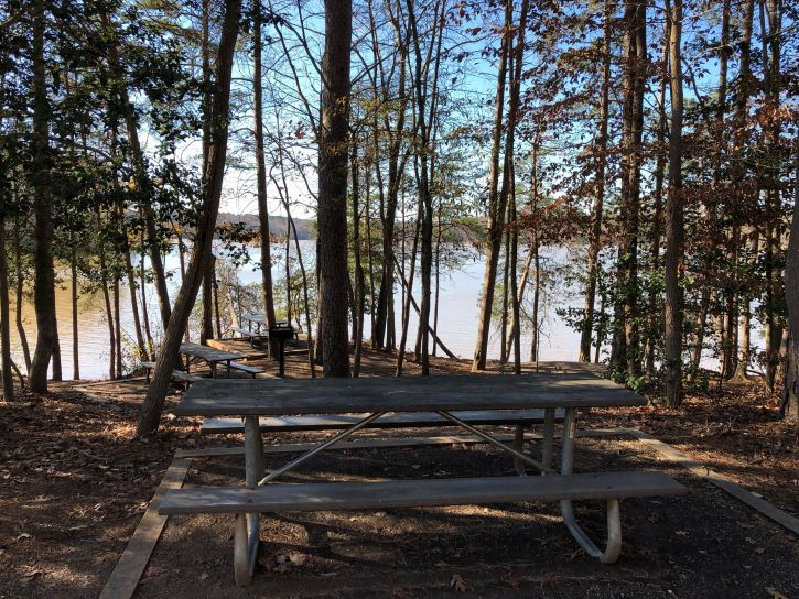 A picnic table at Lake Norman State Park.