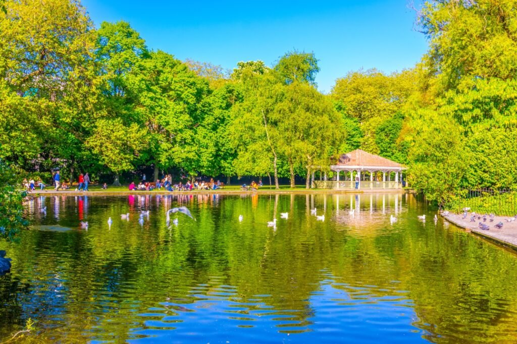 A pond in Saint Stephen's Green.