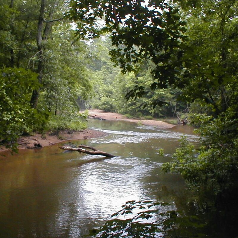 A portion of Alabama's Scenic River Trail.
