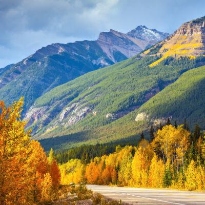 A road through Banff National Park.