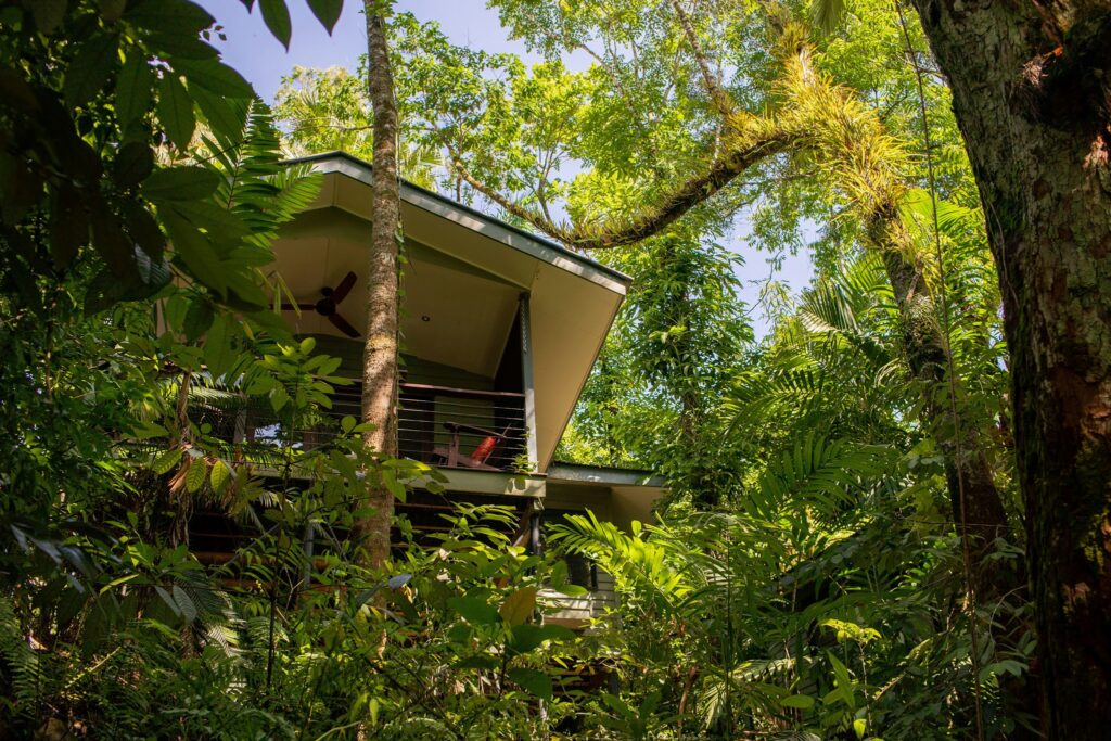 A room at the Silky Oaks Lodge in Daintree Forest.